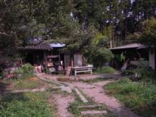 タイ古式マッサージサロン 『Chai』 スタッフ日記-ブラウンズフィールド