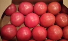 タイ古式マッサージサロン 『Chai(チャイ)』 スタッフ日記-トマト