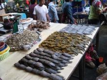 市場魚干物